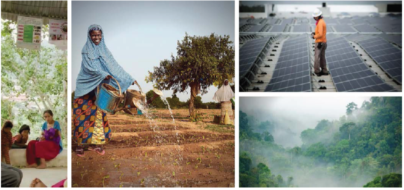 Algunos ejemplos de acciones relativas al cambio climático realizadas por el Grupo Banco Mundial desde la #COP21 en París