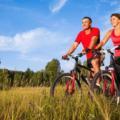 WestShore-Mountain-Biking